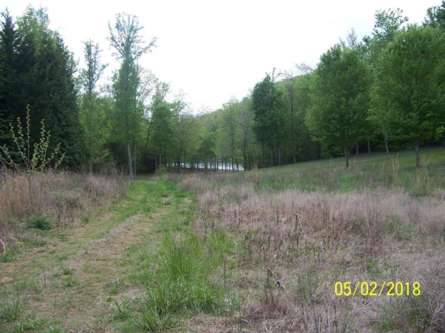 Fox Ridge Lane, Caryville, TN 37714 (#1039942) :: Shannon Foster Boline Group