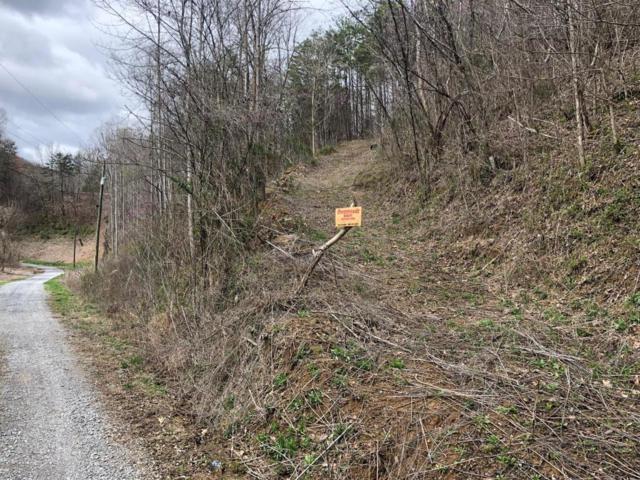 Bear Hollow Way Way, Sevierville, TN 37876 (#1039986) :: Billy Houston Group