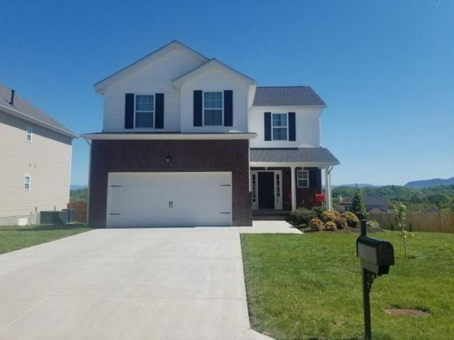 2835 Southwinds Circle, Sevierville, TN 37876 (#1040084) :: Billy Houston Group