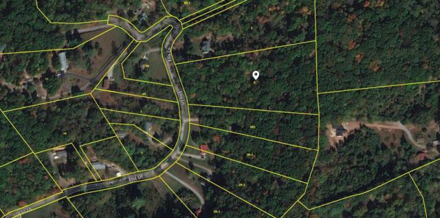 8914 Ellis Lane, Powell, TN 37849 (#1040259) :: Billy Houston Group