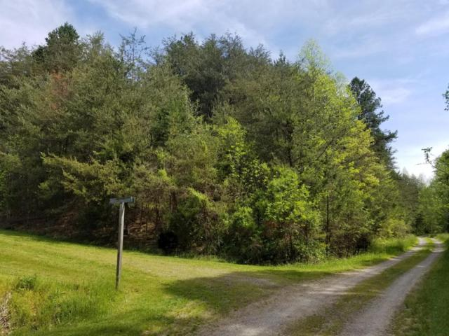 Amis Way, Sevierville, TN 37876 (#1040288) :: Billy Houston Group