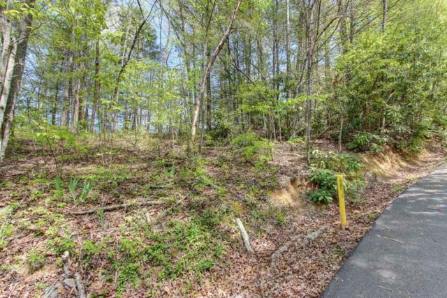 Lot 42 Ownby Drive, Gatlinburg, TN 37738 (#1040294) :: Billy Houston Group