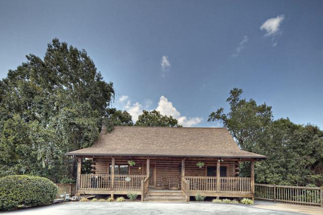 650 Kings Hills Blvd, Pigeon Forge, TN 37863 (#1040396) :: The Terrell Team
