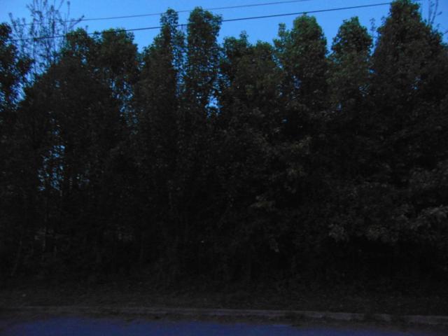 Iroquois Way, Clinton, TN 37716 (#1040623) :: Billy Houston Group