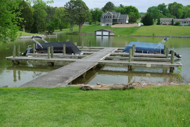 Promontory Point, Louisville, TN 37777 (#1040638) :: Billy Houston Group
