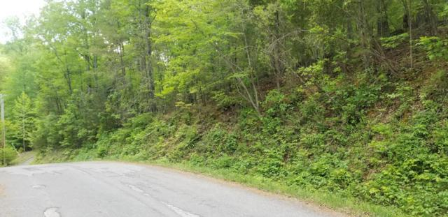 Cove Pointe Rd Lot 22, LaFollette, TN 37766 (#1040681) :: Billy Houston Group