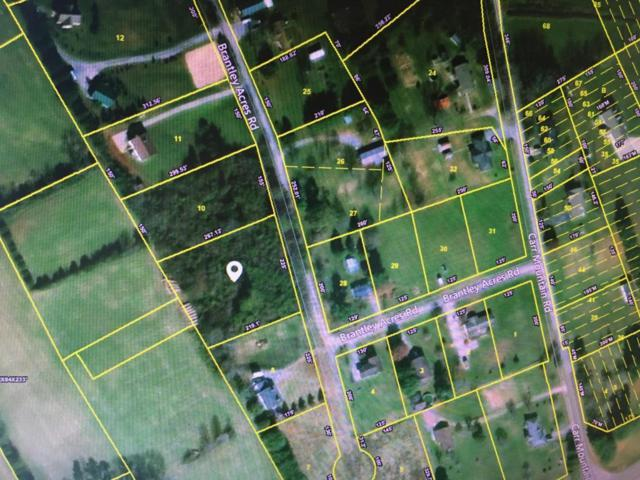 Brantley Acres Road Rd #9, Speedwell, TN 37870 (#1040703) :: Billy Houston Group