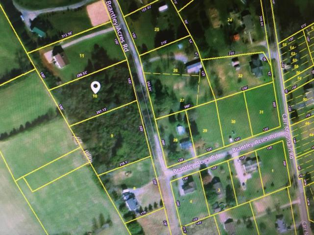 Brantley Acres Rd, Speedwell, TN 37870 (#1040721) :: Billy Houston Group