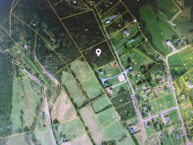 Brantley Acres Rd, Speedwell, TN 37870 (#1040737) :: Billy Houston Group
