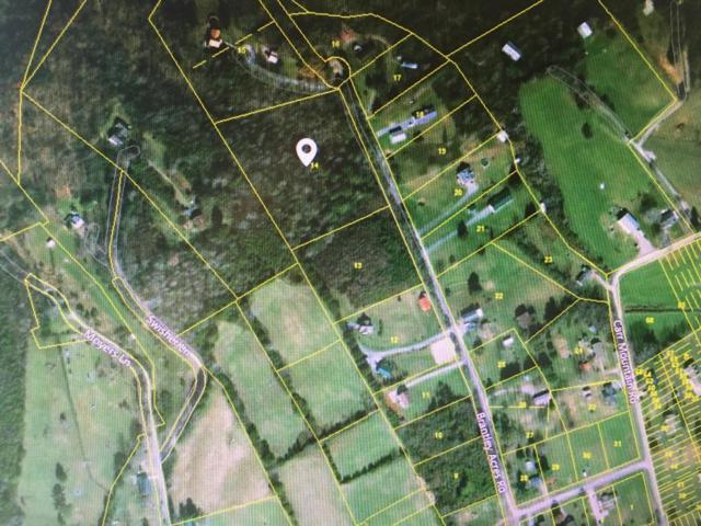 Brantley Acres Rd, Speedwell, TN 37870 (#1040743) :: Billy Houston Group