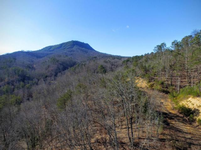 1630 Seagle Hollow Rd, Sevierville, TN 37876 (#1040875) :: The Terrell Team