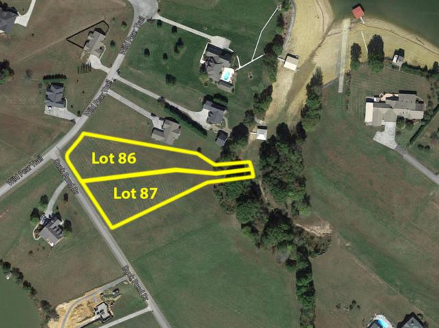 Duck Pond Drive, Dandridge, TN 37725 (#1040881) :: Shannon Foster Boline Group