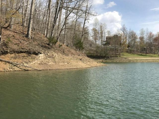 Mountain Shores Rd Rd 10,11, Tazewell, TN 37879 (#1040900) :: Shannon Foster Boline Group