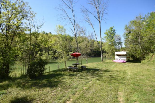 Lot 1 Island View Way, Sevierville, TN 37876 (#1040945) :: Billy Houston Group