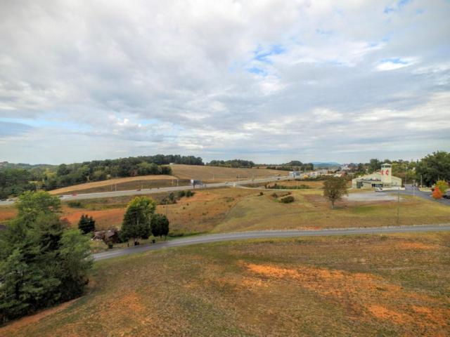 Parcel 199 Bryan Rd, Sevierville, TN 37876 (#1041004) :: SMOKY's Real Estate LLC