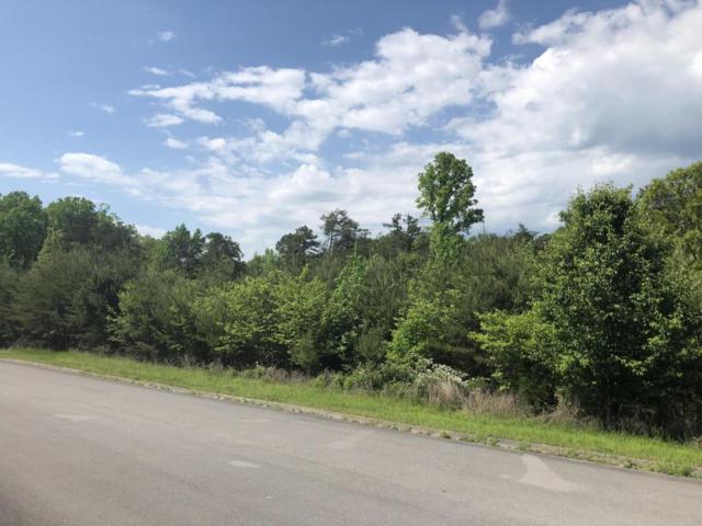 Waterstone Drive, Dandridge, TN 37725 (#1041064) :: Billy Houston Group