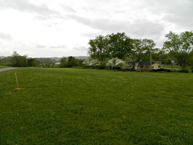 827 Hillside Drive, Dandridge, TN 37725 (#1041091) :: Shannon Foster Boline Group