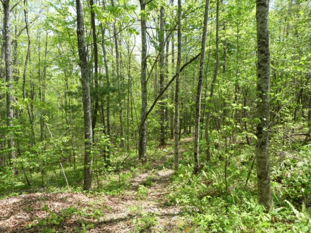 Mill Creek Rd, Allardt, TN 38504 (#1041096) :: Billy Houston Group