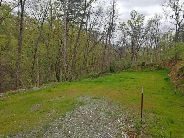 424 Troy Drive, Pigeon Forge, TN 37863 (#1041116) :: Billy Houston Group