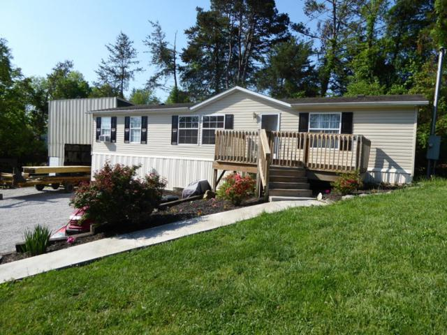 105 4th St, Corryton, TN 37721 (#1041138) :: Shannon Foster Boline Group