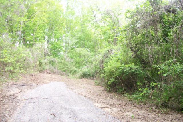 Bowman Drive, Jacksboro, TN 37757 (#1041144) :: Billy Houston Group