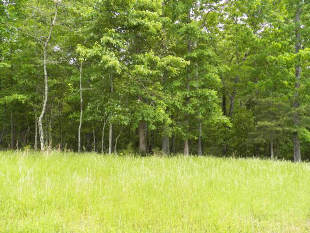 Indian Shadows Drive, Ten Mile, TN 37880 (#1041161) :: Billy Houston Group