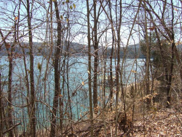 Lot 197 Lakeview Drive, Sharps Chapel, TN 37866 (#1041188) :: Shannon Foster Boline Group
