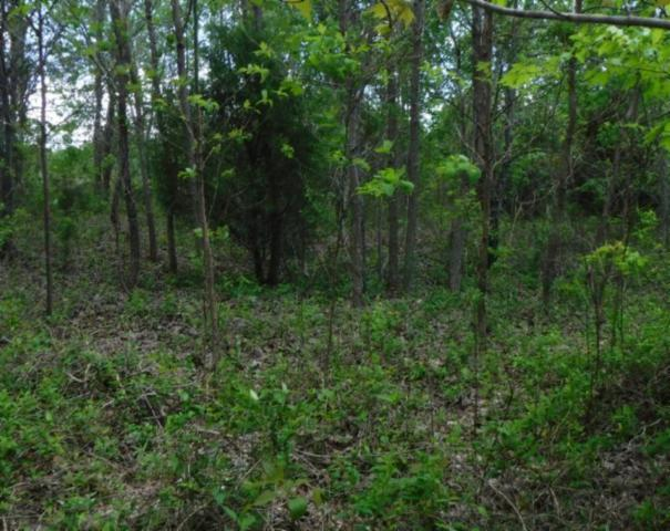 .57 Ac. Hidden Cove Lane, Allons, TN 38541 (#1041223) :: Billy Houston Group