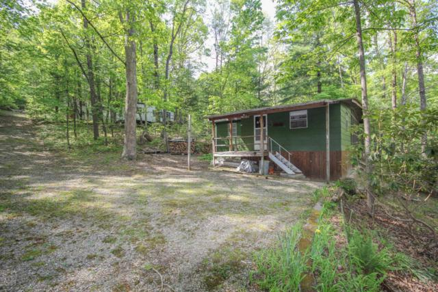 6809 Holiday Drive, Tallassee, TN 37878 (#1041283) :: Venture Real Estate Services, Inc.