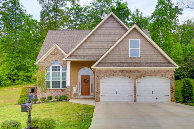 781 Oaks Hills Drive, Lenoir City, TN 37771 (#1041415) :: Shannon Foster Boline Group