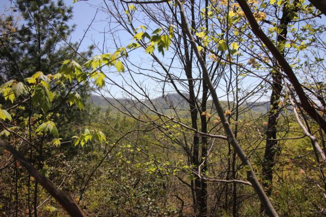 Settlers View Lane, Sevierville, TN 37862 (#1041419) :: Shannon Foster Boline Group