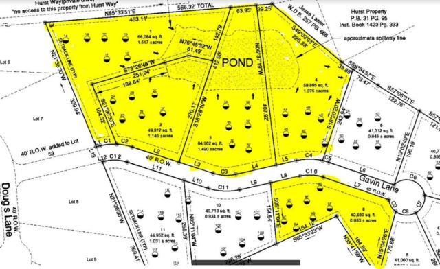 832 Gavin Lane, Seymour, TN 37865 (#1041586) :: Shannon Foster Boline Group