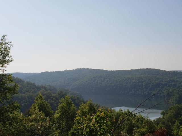 Lot 585 Whistle Valley Rd, New Tazewell, TN 37825 (#1041629) :: Shannon Foster Boline Group