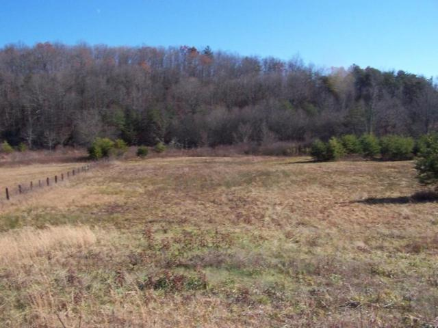 Tanner Trail, Crossville, TN 38555 (#1041733) :: Shannon Foster Boline Group