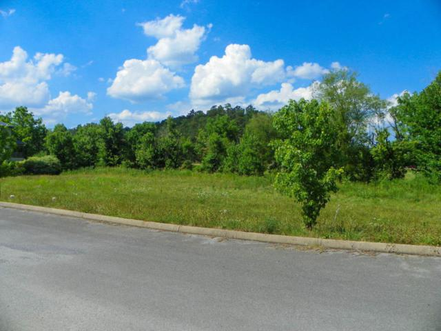 3110 Cherokee Valley Drive, Pigeon Forge, TN 37862 (#1041783) :: The Terrell Team