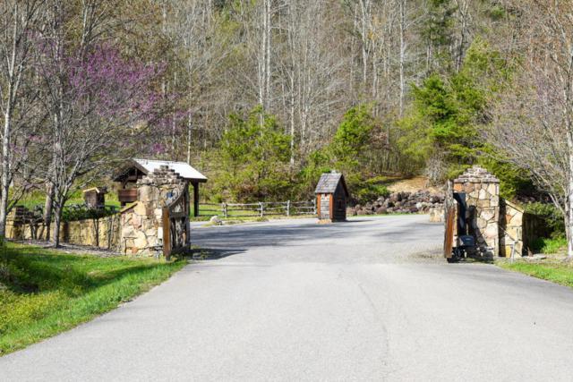 426 Kinzel Springs Way, Townsend, TN 37882 (#1041795) :: SMOKY's Real Estate LLC