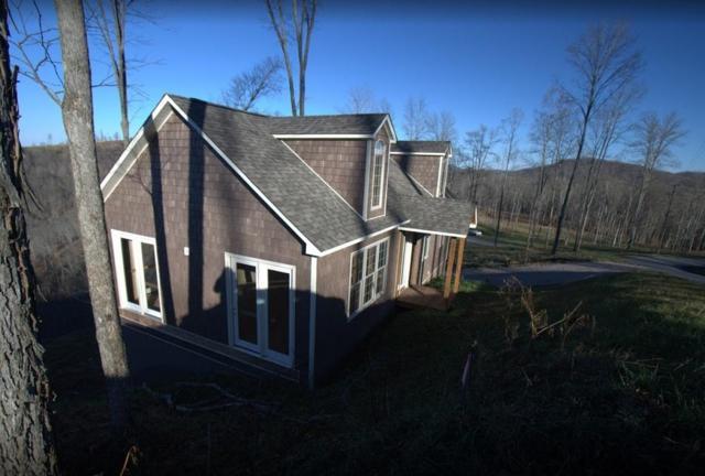 576 Hickory Pointe, Maynardville, TN 37807 (#1041797) :: Shannon Foster Boline Group
