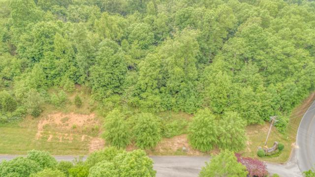 110 Vineyard Cove Drive, Loudon, TN 37774 (#1041854) :: Shannon Foster Boline Group