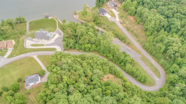 250 Vineyard Cove Drive, Loudon, TN 37774 (#1041870) :: Shannon Foster Boline Group