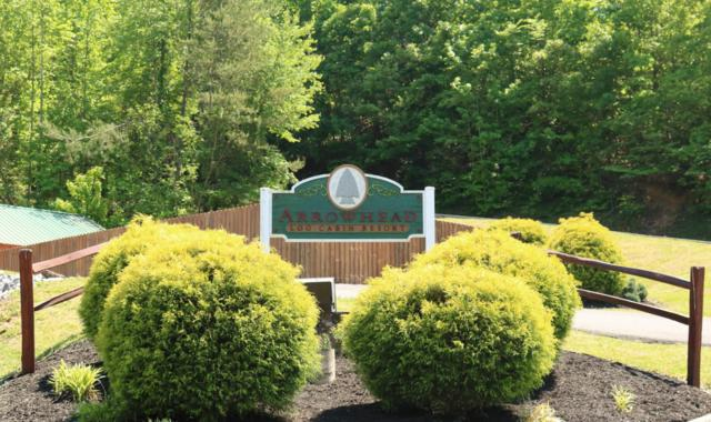 Lot 43-R Chickasaw Gap Way, Pigeon Forge, TN 37863 (#1041891) :: Billy Houston Group