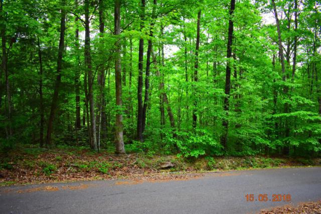 Hatcher Mountain Rd, Sevierville, TN 37862 (#1041923) :: Billy Houston Group