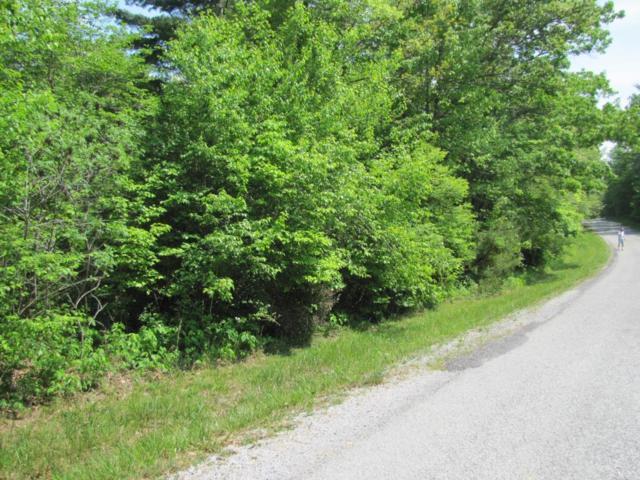 141 Windsor Rd, Crossville, TN 38558 (#1041945) :: Shannon Foster Boline Group
