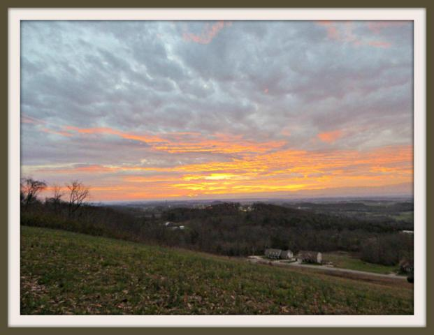 Lot 62 Scenic View Drive, Talbott, TN 37877 (#1041948) :: Billy Houston Group