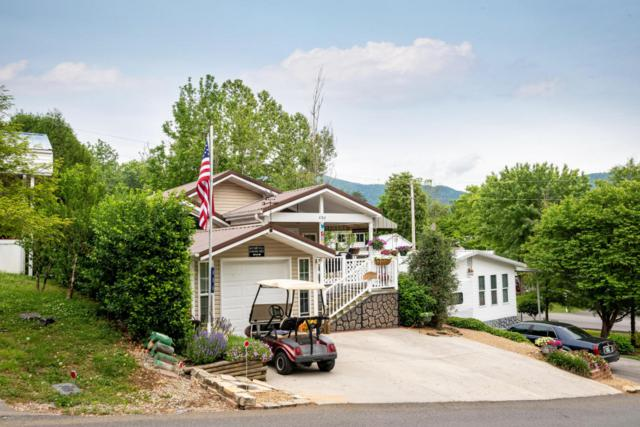 406 Mountain Thrush Drive, Townsend, TN 37882 (#1041982) :: SMOKY's Real Estate LLC