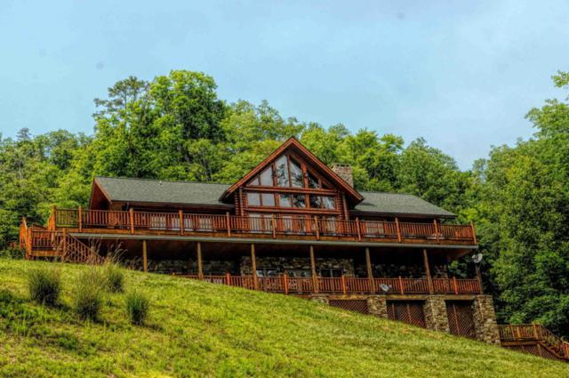 1811 Mountain Shores Rd, New Tazewell, TN 37825 (#1042016) :: Shannon Foster Boline Group