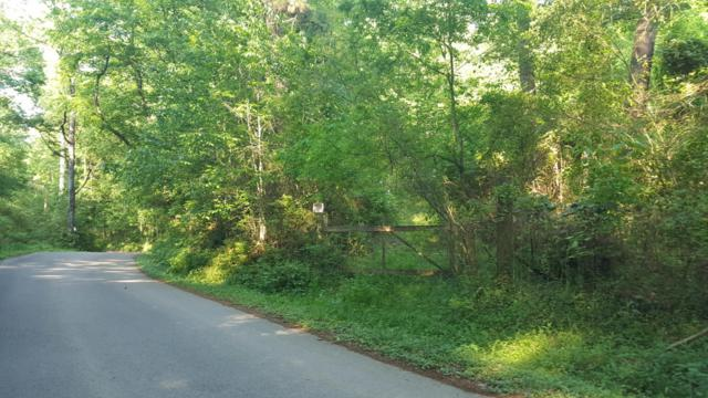 13108 Lovelace Rd, Knoxville, TN 37932 (#1042234) :: Billy Houston Group