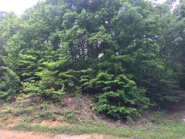 Lot 5 Emerald Pointe Circle, Rockwood, TN 37854 (#1042325) :: CENTURY 21 Legacy