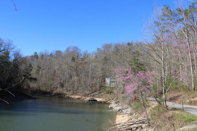 View Of The Lake Drive, Jacksboro, TN 37757 (#1042327) :: Billy Houston Group