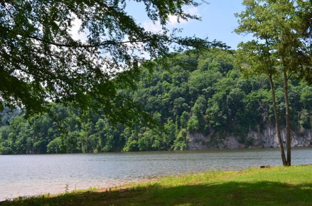 00 Walnut Bend Drive, Whitesburg, TN 37891 (#1042412) :: SMOKY's Real Estate LLC