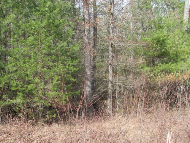 Lot 10 Forest View Drive, Fairfield Glade, TN 38558 (#1042423) :: Billy Houston Group